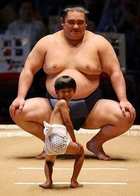sumo sport
